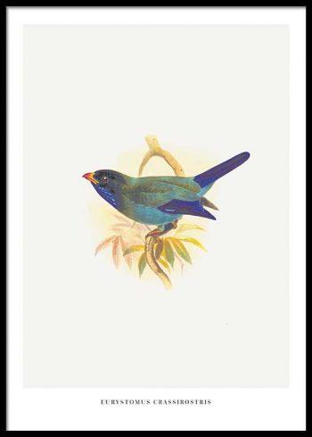 BIRDS NO. 2 POSTER