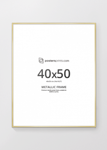 PICTURE FRAME GOLD 40x50