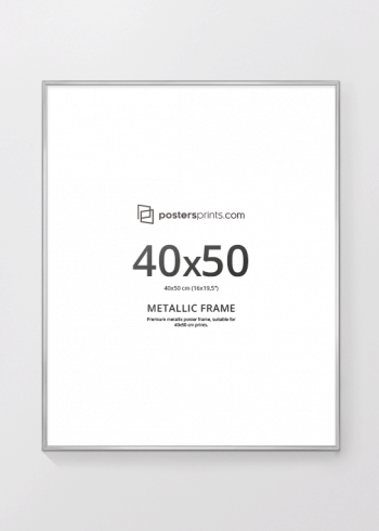 PICTURE FRAME SILVER 40x50