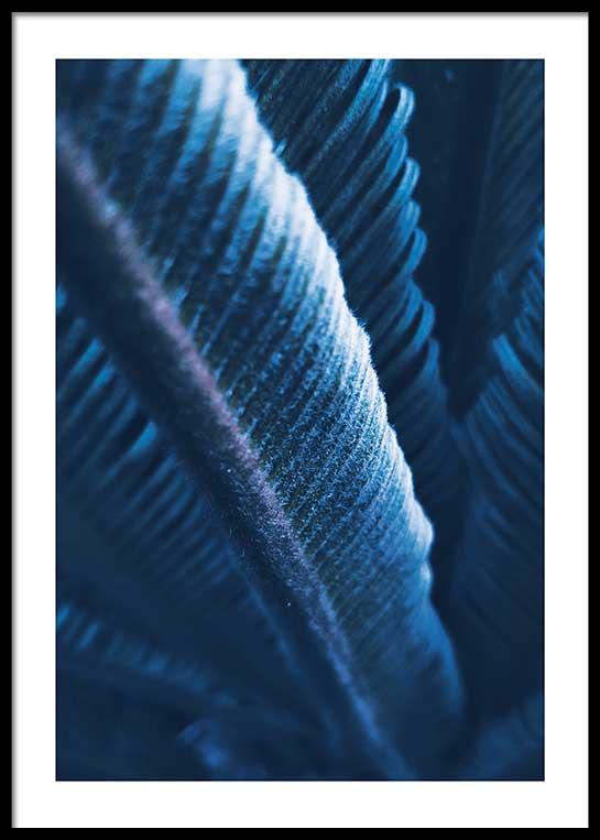 BLUE BANANA LEAVES POSTER